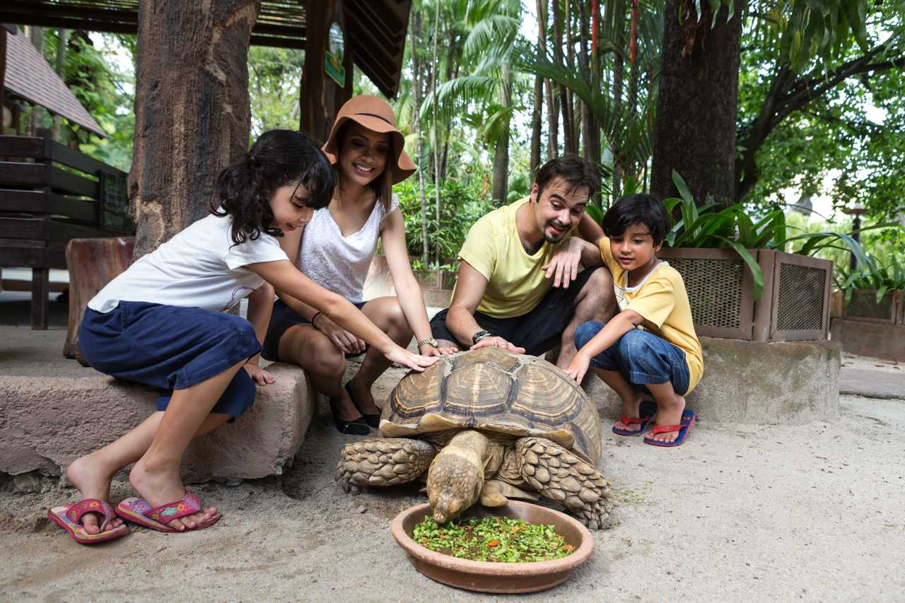Pet Village at Wildlife Park - Sunway Lagoon Malaysia Zoo